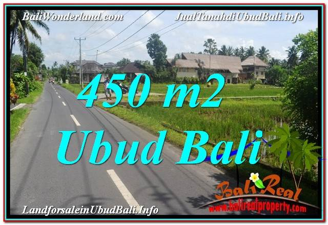 Magnificent 450 m2 LAND FOR SALE IN Sentral / Ubud Center TJUB647