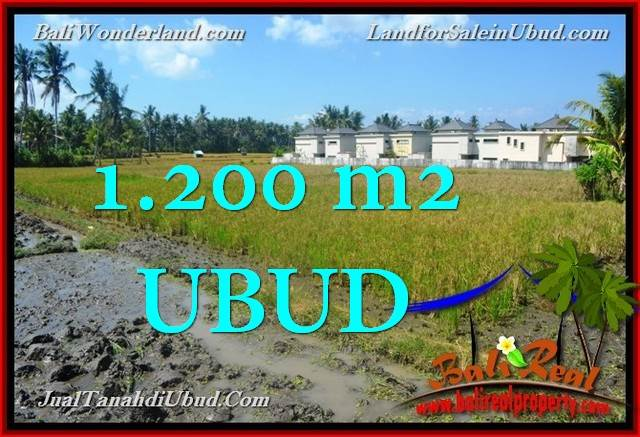 Beautiful PROPERTY Sentral Ubud 1,200 m2 LAND FOR SALE TJUB663