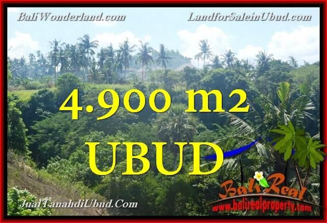 Beautiful 4,900 m2 LAND FOR SALE IN Ubud Gianyar TJUB665