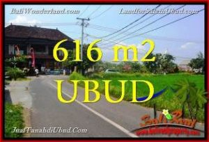 Exotic 616 m2 LAND FOR SALE IN UBUD BALI TJUB650