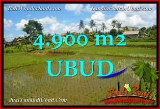 Beautiful 4,900 m2 LAND IN UBUD BALI FOR SALE TJUB652