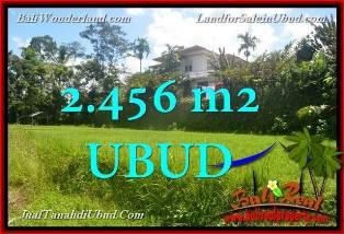 FOR SALE Affordable LAND IN Ubud Tegalalang TJUB654