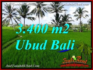Affordable PROPERTY 3,400 m2 LAND SALE IN UBUD TJUB656