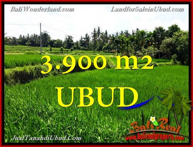 Magnificent LAND IN Ubud Pejeng BALI FOR SALE TJUB658