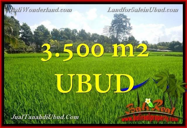 Affordable PROPERTY LAND SALE IN Ubud Gianyar BALI TJUB660