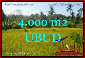 Magnificent PROPERTY 4,000 m2 LAND IN Ubud Gianyar FOR SALE TJUB661