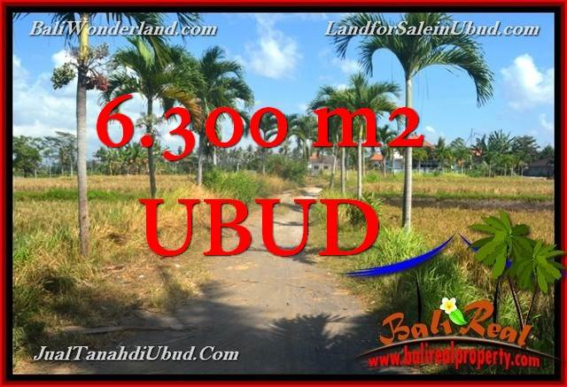 Magnificent PROPERTY 6,300 m2 LAND SALE IN UBUD BALI TJUB662
