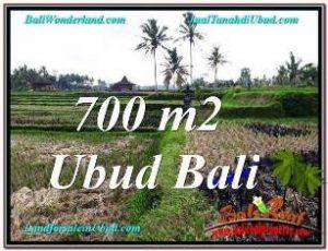 SENTRAL UBUD BALI LAND FOR SALE TJUB666