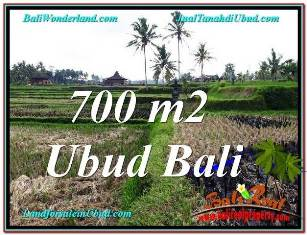 Beautiful 700 m2 LAND FOR SALE IN UBUD BALI TJUB666