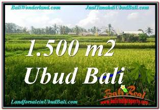 1,500 m2 LAND FOR SALE IN UBUD BALI TJUB667