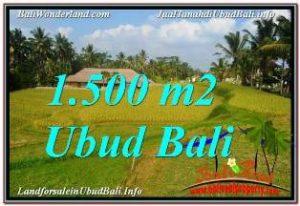 FOR SALE Affordable LAND IN UBUD TEGALALANG BALI TJUB668