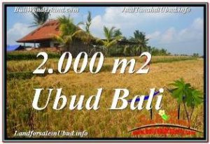 FOR SALE Magnificent 2,000 m2 LAND IN UBUD BALI TJUB669