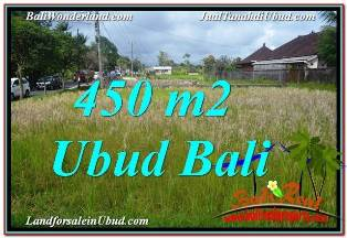 450 m2 LAND FOR SALE IN CENTRAL UBUD TJUB671
