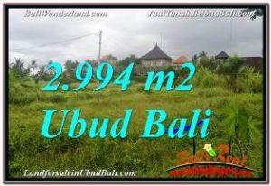 Beautiful PROPERTY UBUD BALI LAND FOR SALE TJUB672