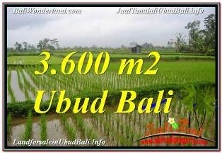Exotic 3,600 m2 LAND SALE IN UBUD TEGALALANG TJUB673