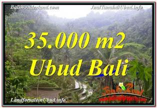 Affordable 35,000 m2 LAND FOR SALE IN UBUD TEGALALANG TJUB674