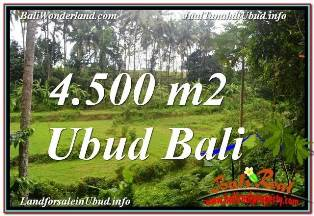 Affordable PROPERTY SENTRAL UBUD BALI 4,500 m2 LAND FOR SALE TJUB675