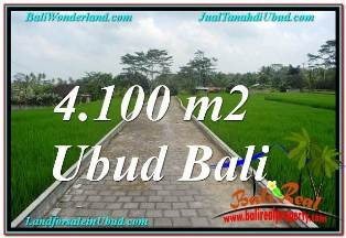 Magnificent 4,100 m2 LAND SALE IN SENTRAL UBUD TJUB676