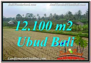 Affordable LAND SALE IN UBUD TJUB677