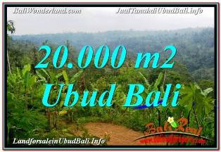 Affordable PROPERTY 20,000 m2 LAND IN UBUD PAYANGAN BALI FOR SALE TJUB678