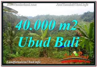 Magnificent LAND IN UBUD BALI FOR SALE TJUB679