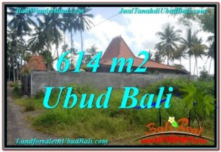 FOR SALE Beautiful PROPERTY 614 m2 LAND IN Sentral Ubud BALI TJUB622