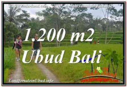 FOR SALE Beautiful PROPERTY 1,200 m2 LAND IN Ubud Tegalalang BALI TJUB624