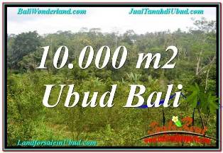 Beautiful PROPERTY UBUD TAMPAK SIRING 10,500 m2 LAND FOR SALE TJUB681