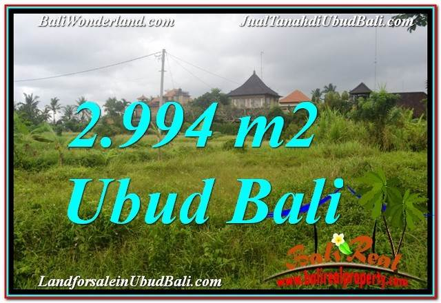 Magnificent LAND FOR SALE IN UBUD BALI TJUB672