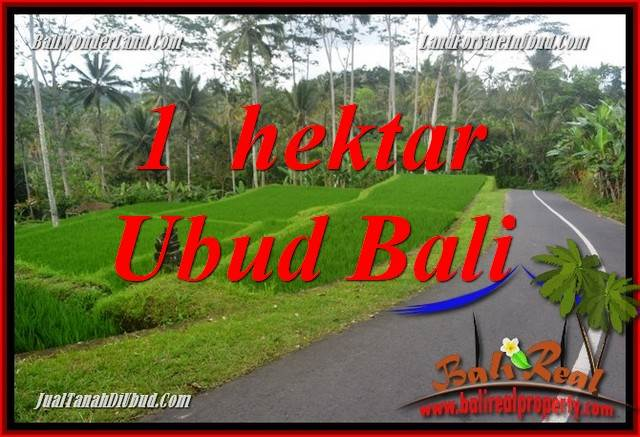 Magnificent Property 10,000 m2 Land sale in Ubud Tegalalang TJUB683