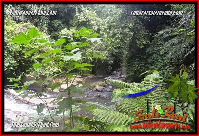 FOR sale Beautiful Property 9,400 m2 Land in Ubud Gianyar TJUB686
