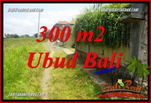 Exotic Property Land for sale in Ubud Bali TJUB687