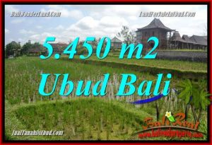 Exotic 5,450 m2 Land for sale in Sentral Ubud TJUB688