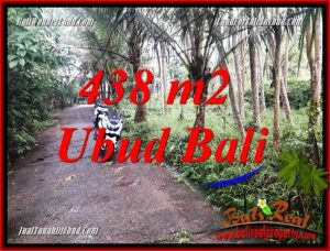 Exotic Land sale in Ubud TJUB689