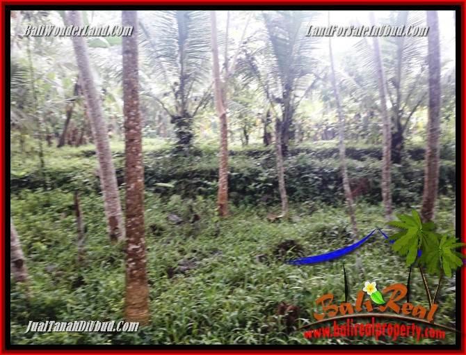 Exotic Property 438 m2 Land sale in Ubud Pejeng TJUB689