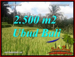 Exotic Property Land for sale in Ubud Bali TJUB690