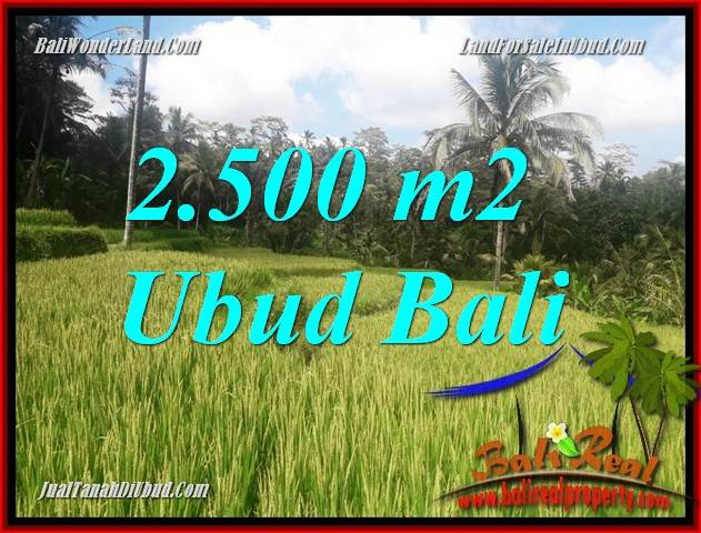 Exotic Land for sale in Ubud TJUB690