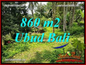 Beautiful Ubud Tegalalang 860 m2 Land for sale TJUB691