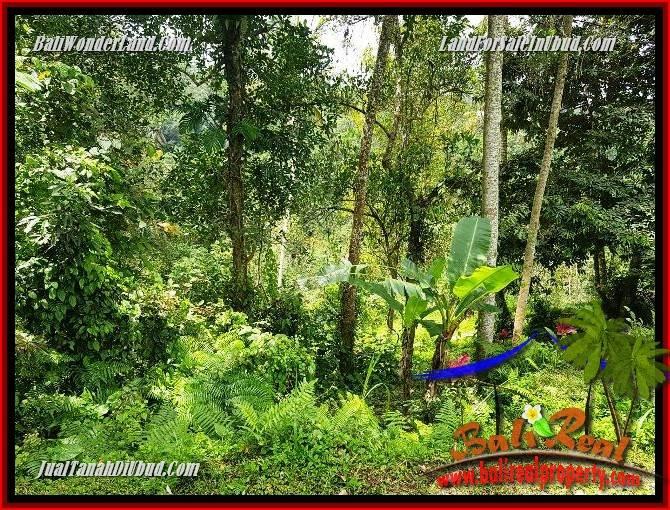 Beautiful Land sale in Ubud TJUB691