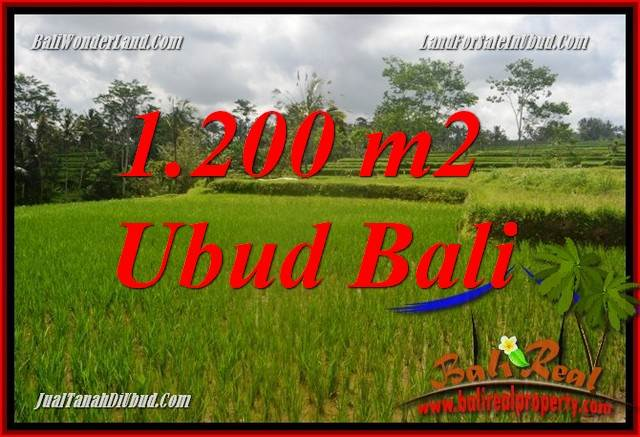 Exotic Property Ubud Land for sale TJUB693