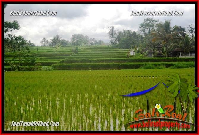 FOR sale Exotic Property 1,200 m2 Land in Ubud Tegalalang TJUB693