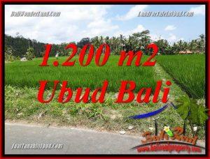 Exotic Ubud Land for sale TJUB694
