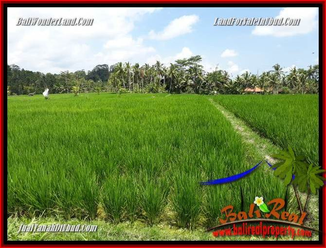 Beautiful Property Ubud Bali Land for sale TJUB694