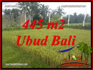 Affordable 445 m2 Land for sale in Ubud Pejeng TJUB695