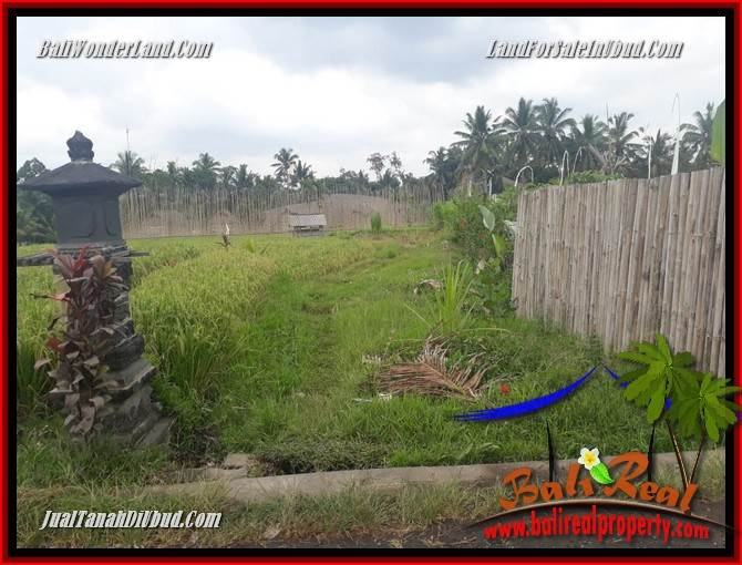 Land for sale in Ubud TJUB695