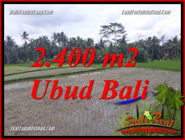 Exotic Property 2,400 m2 Land for sale in Ubud Pejeng Bali TJUB697