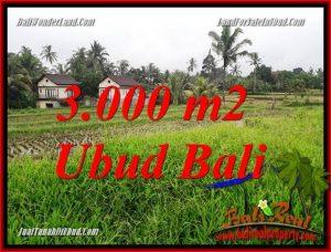 FOR sale 3,000 m2 Land in Ubud Bali TJUB698