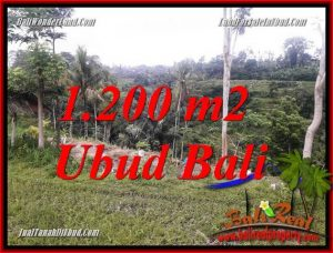 Land in Ubud for sale TJUB699