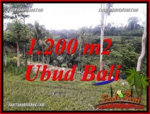 Land in Ubud for sale TJUB699