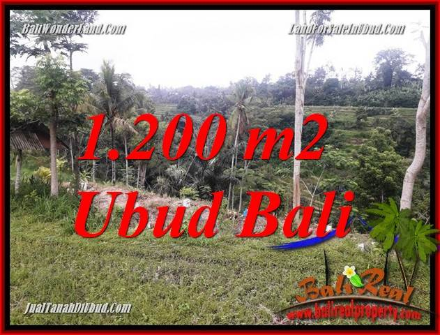 Magnificent Property Ubud Bali Land for sale TJUB699